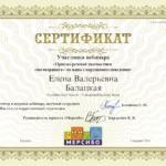 сертификат мерсибо